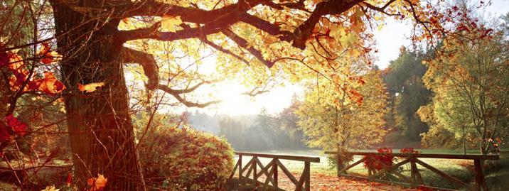Slider Herbst ohne rtext